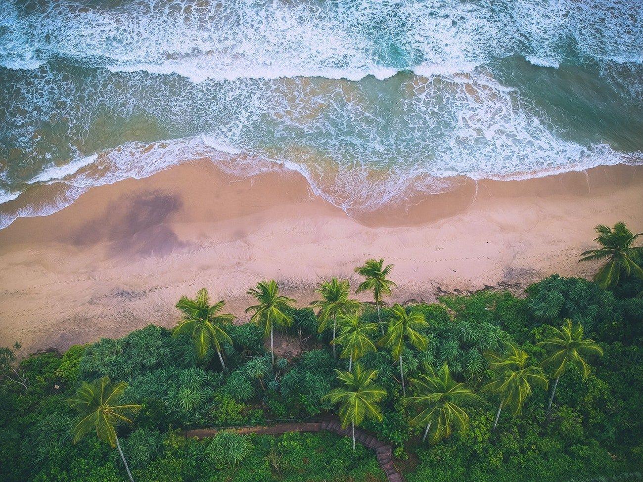 Vacation in Sri Lanka